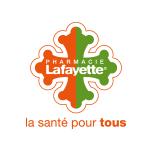 Logo Lafayette Conseil